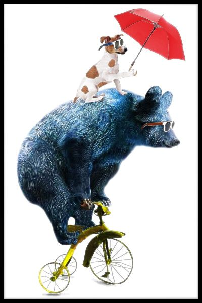 Bear Bicycle Illustration Poster