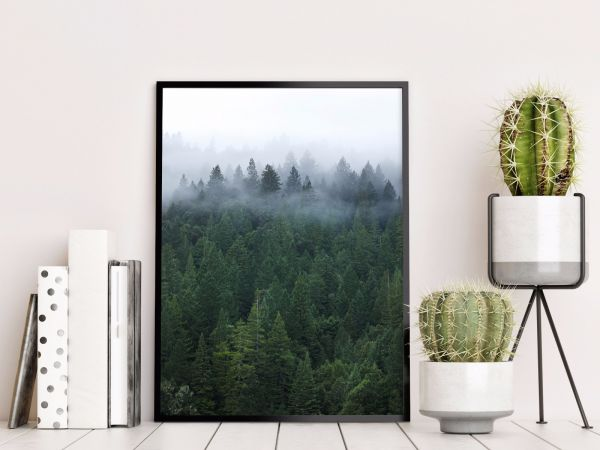 Mist In The Forest Tavla