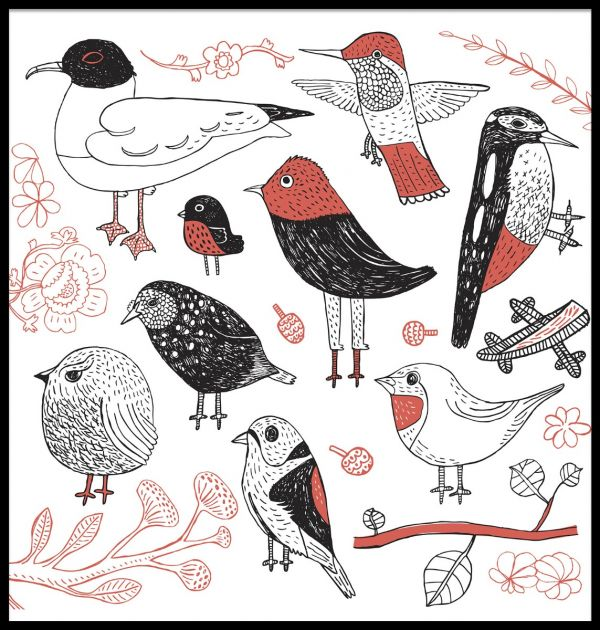 Hand Drawn Birds Poster