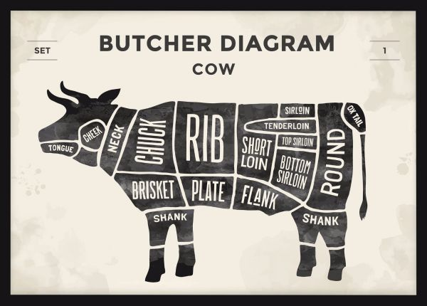 Beef Cuts Illustration Poster