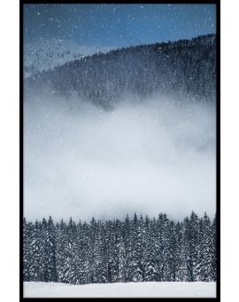 Winter View Forest Poster