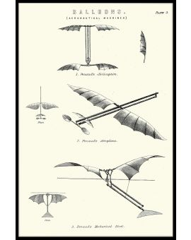 Vintage Flying Machines Poster