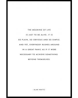 Meaning of Life Poster