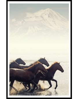 Wild Horses N02 Poster