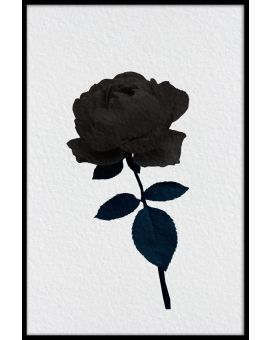 Dark Rose Illustration Poster