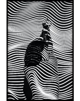Abstract Black & White N01 Poster