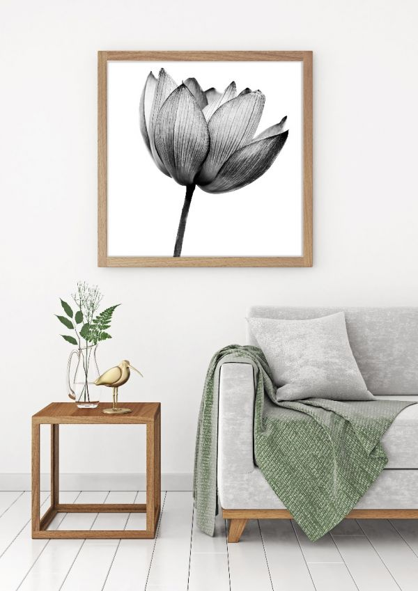 Lotus Black & White Tavla