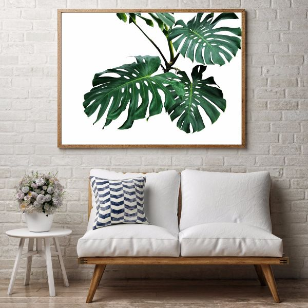 Leafs of Monstera Tavla