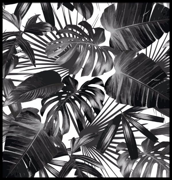 Palm Leaves Black & White Poster