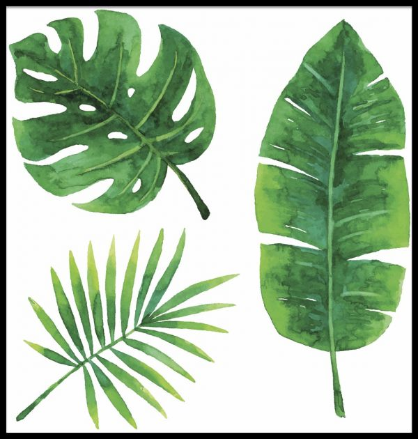 Tropical Leaves Watercolor Illustration Poster