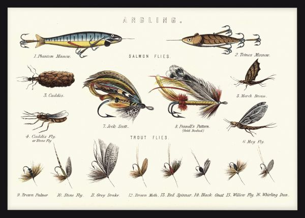 Victorian Fishing Lures Poster
