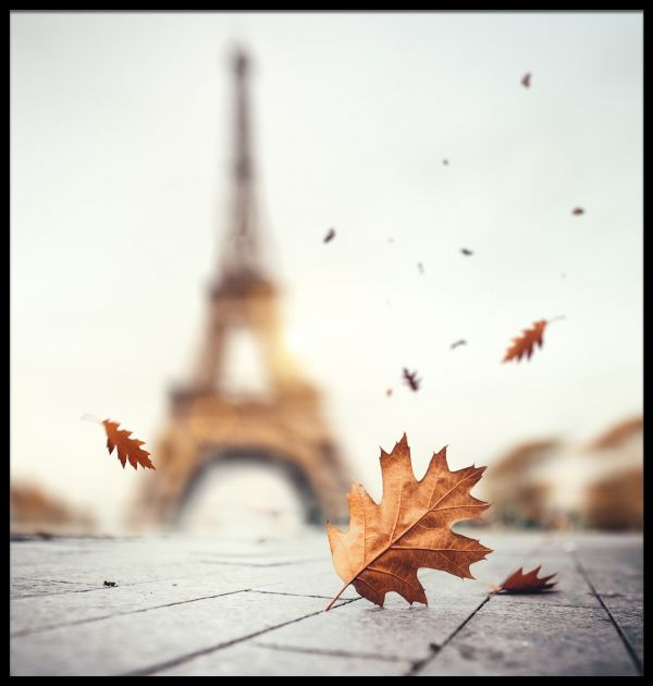 Autumn in Paris Eiffel Tower Poster