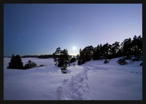 Starry Sky and Snow Poster