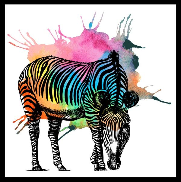 Zebra Colorful Abstract Poster