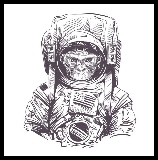 Space Monkey Illustration Poster
